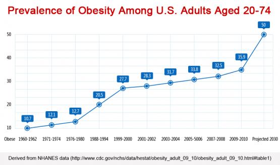 US Adult Obesity 1960-2010